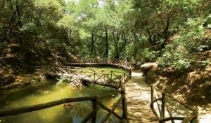 ΠΥΡ: Επιβεβλημένο σχέδιο διαφυγής από την Κοιλάδα Πεταλούδων