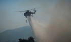 Συνελήφθη 20χρονος αλλοδαπός για τη φωτιά στη Λέρο
